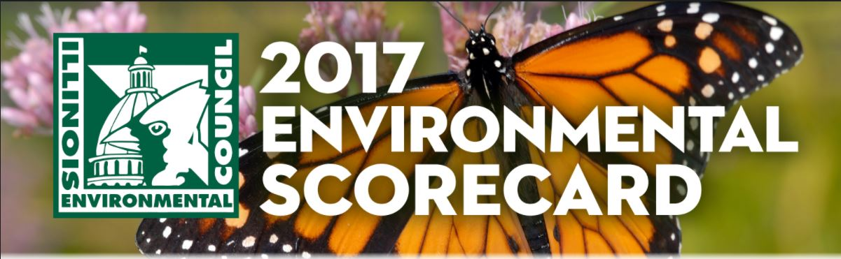 Download your copy of the 2017 Environmental Scorecard